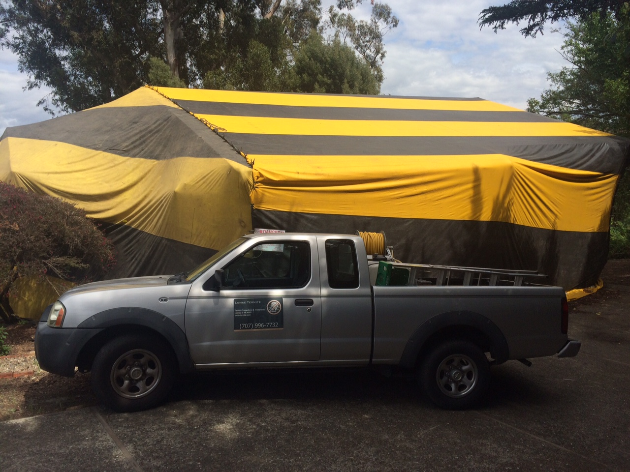 Performing a fumigation for powderpost beetles in San Rafael in May of 2015