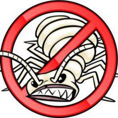 Lomax Termite Control